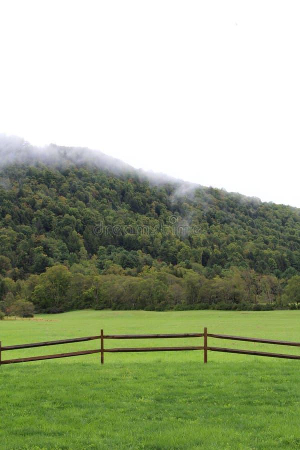 Cena pastoral de um montanhês com baixas nuvens e do prado verde com cerca fotografia de stock royalty free