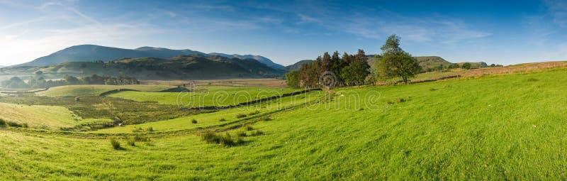 Cena rural, distrito do lago, Reino Unido imagem de stock royalty free