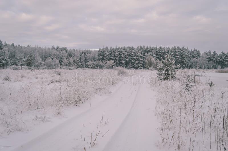 a cena rural do inverno com neve e branco coloca o efeito do vintage fotografia de stock royalty free
