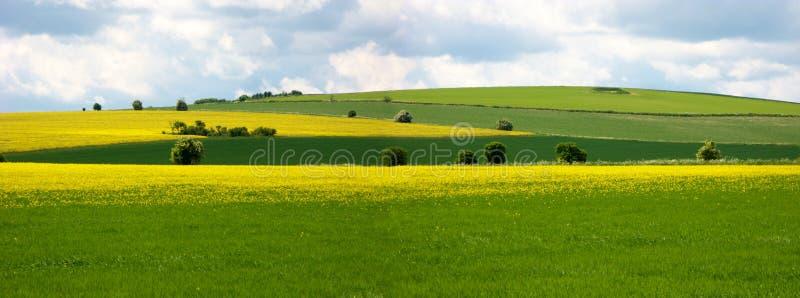 Cena rural no ridgeway, Inglaterra fotos de stock royalty free