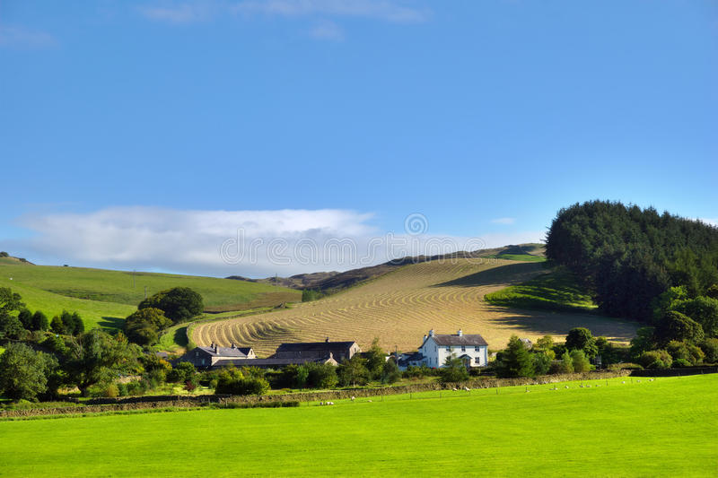 Cena rural nos Dales de Yorkshire fotografia de stock