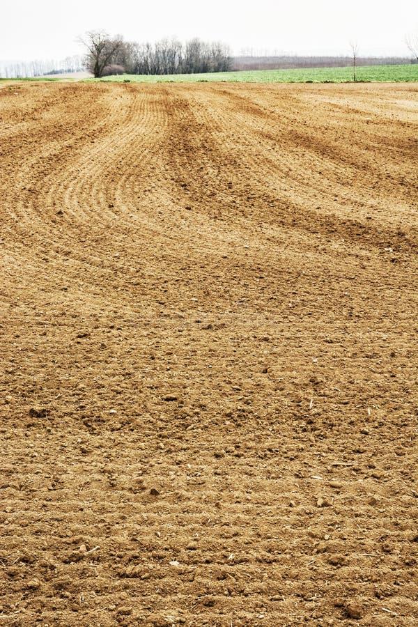 Cena sazonal dos campos, terra cultivada fotos de stock