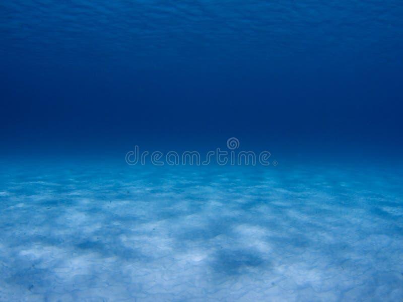 Cena subaquática imagem de stock royalty free