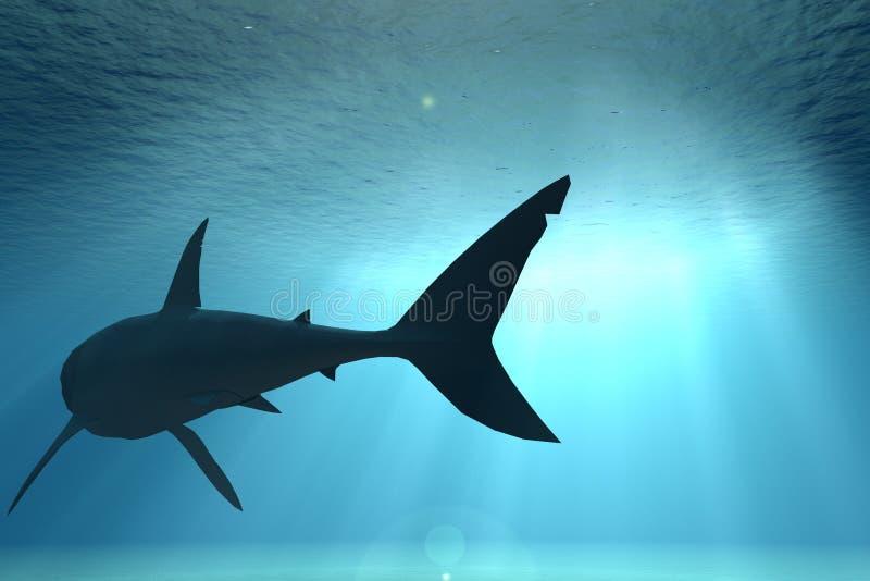 Cena subaquática com tubarão ilustração do vetor