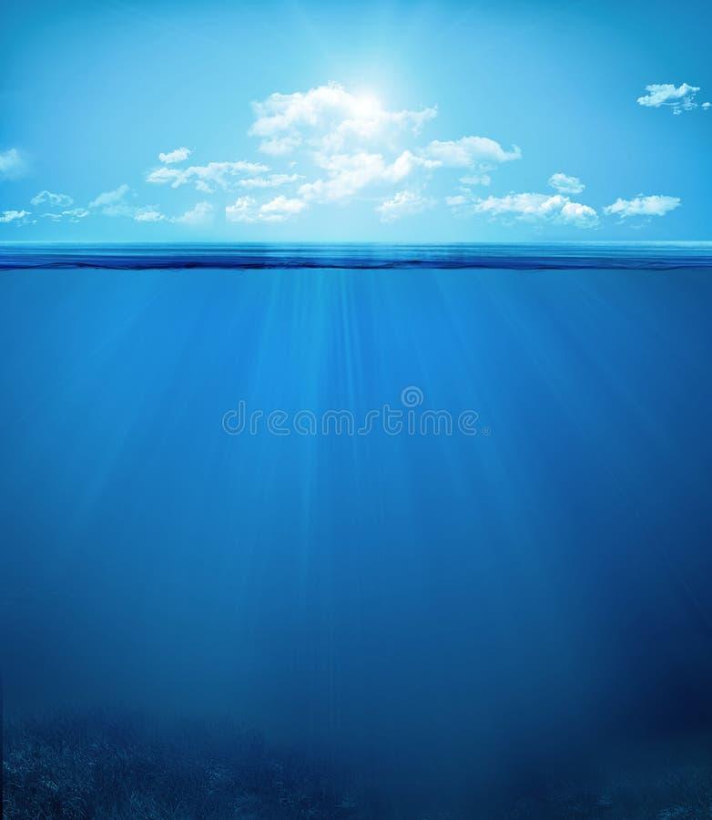 Cena subaquática tropical fotografia de stock royalty free