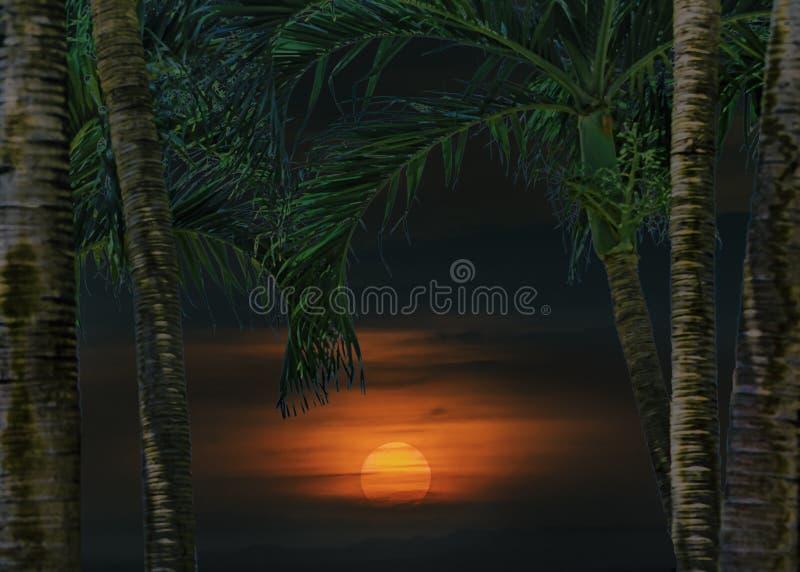Cena tropical da paisagem do por do sol imagem de stock