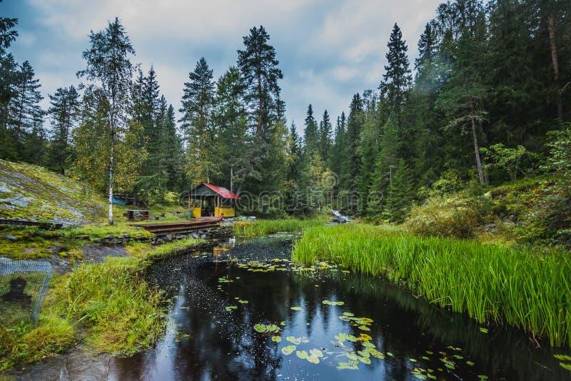 Cenador al lado del río en el bosque, la hierba y las piedras en Karelia fotografía de archivo