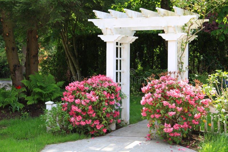 download cenador del jardn y flores rosadas imagen de archivo imagen de outdoors - Cenador De Jardin