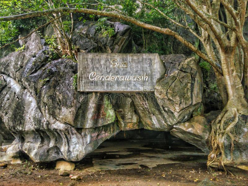 Cenderawasih洞, Kangar,玻璃 免版税库存图片