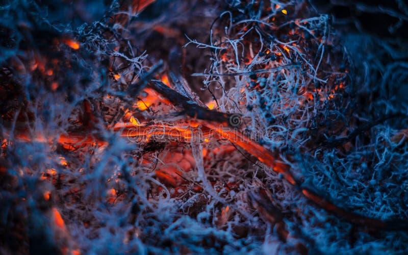 Cendres de combustion lente dans le feu photographie stock libre de droits
