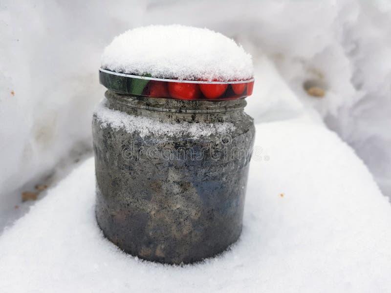 Cendrier - banque avec des mégot dans la neige photographie stock