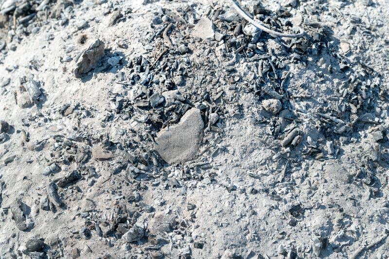 Ceniza gris del fuego Textura del fondo de la ceniza de madera fotografía de archivo