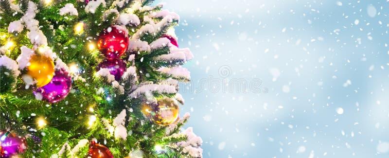 Cenni storici dell'albero di Natale fotografie stock