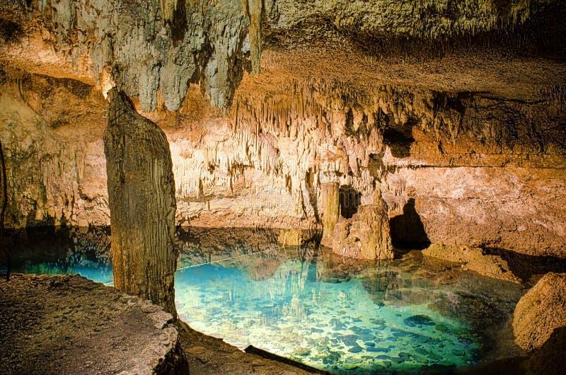Cenote σε Coba στοκ φωτογραφίες