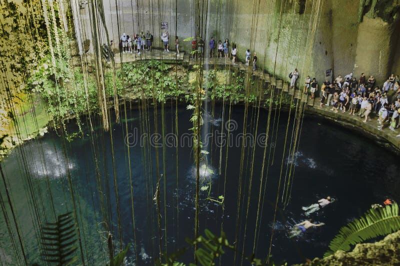 Cenote da pedra calcária fotografia de stock royalty free