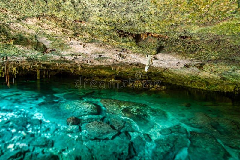 Cenote Dos Ojos -洞两眼睛-在墨西哥,半岛尤加坦用闪耀的清楚的水和温水 图库摄影
