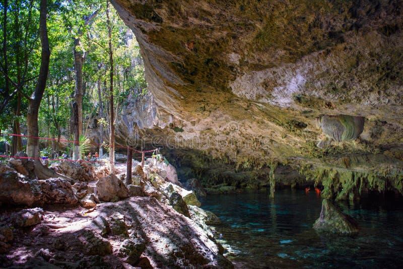 Cenote dos Ojos 免版税库存图片