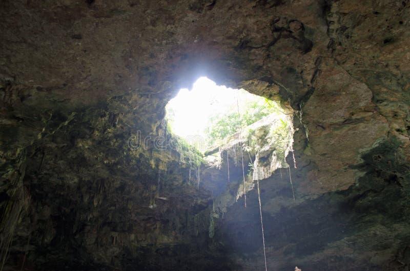Cenote-Dreckloch in Mexiko stockbild