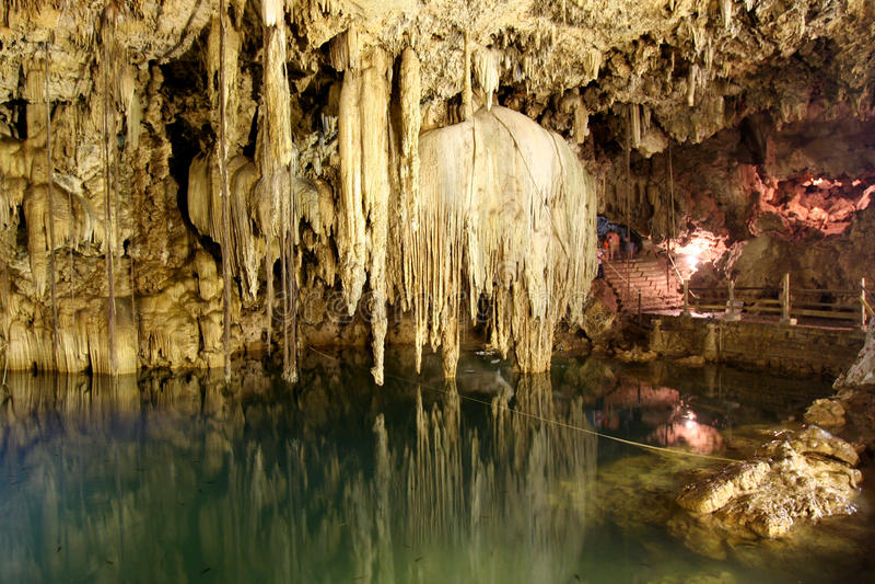 Cenote Dzinup -巴里阿多里德(墨西哥) 免版税库存图片