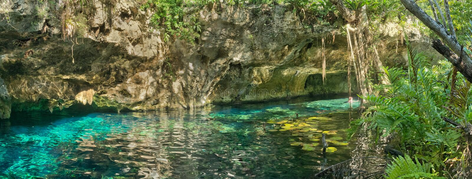 Cenote grand au Mexique images libres de droits