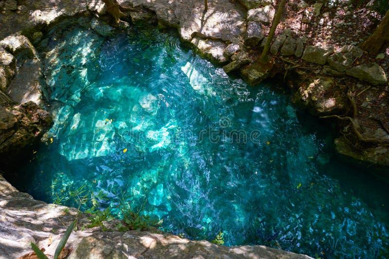 Cenote i Riviera Maya av Mayan Mexico royaltyfri fotografi