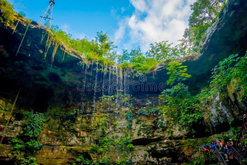 Cenote Ik-Kil около Chichen Itza, Мексики Симпатичное cenote с прозрачными водами и смертной казнью через повешение бирюзы укорен стоковая фотография