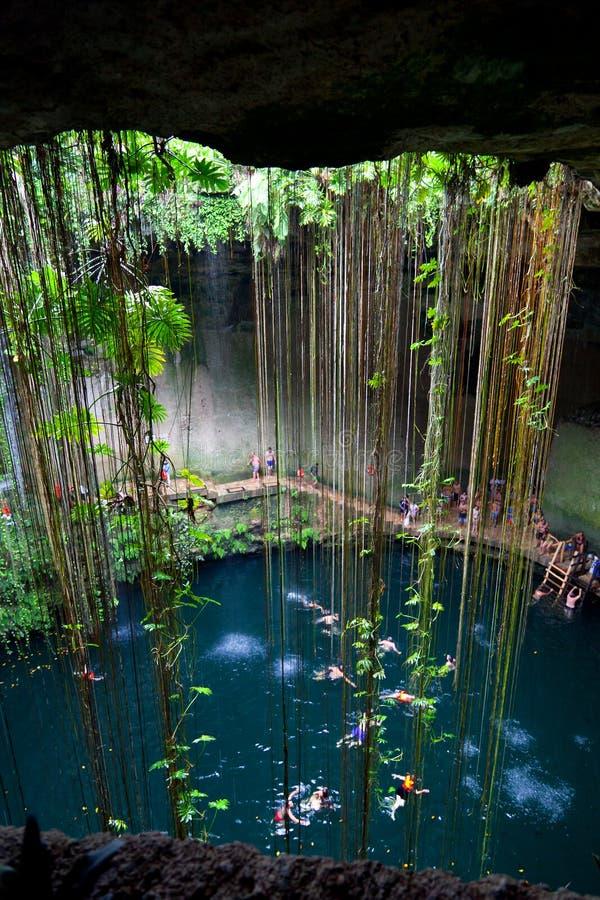 Cenote Ik-Kil, Mexiko stockbild