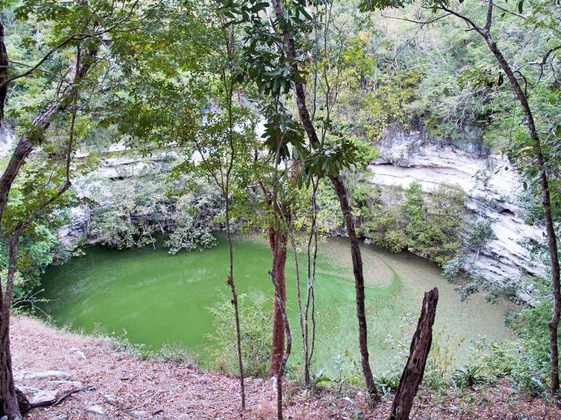 Cenote Sagrado Xtoloc (sakrala Cenote) Chichen Itza royaltyfri bild