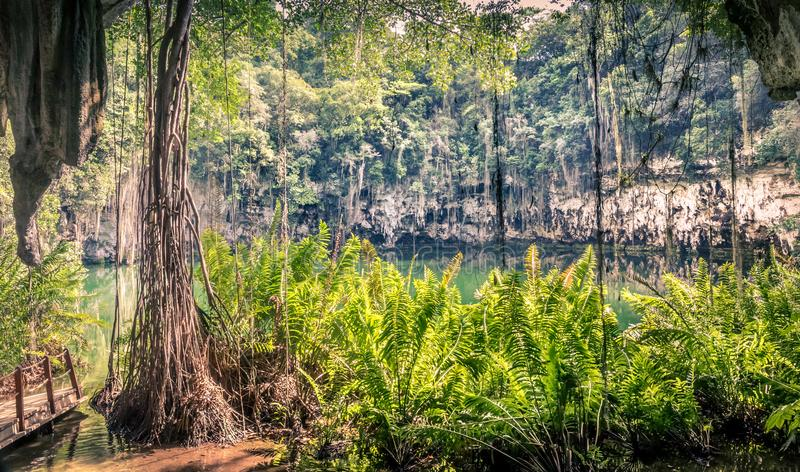 Cenote of Santo Domingo royalty free stock photos