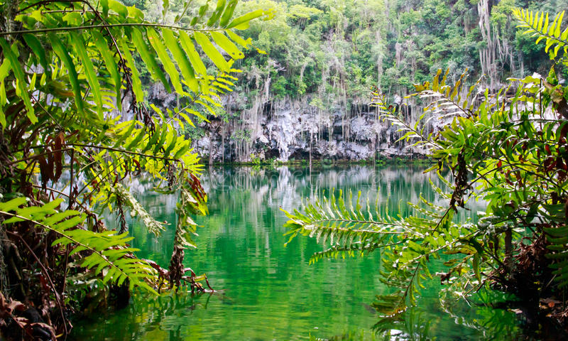 Cenote of Santo Domingo. Dominican Republic royalty free stock image