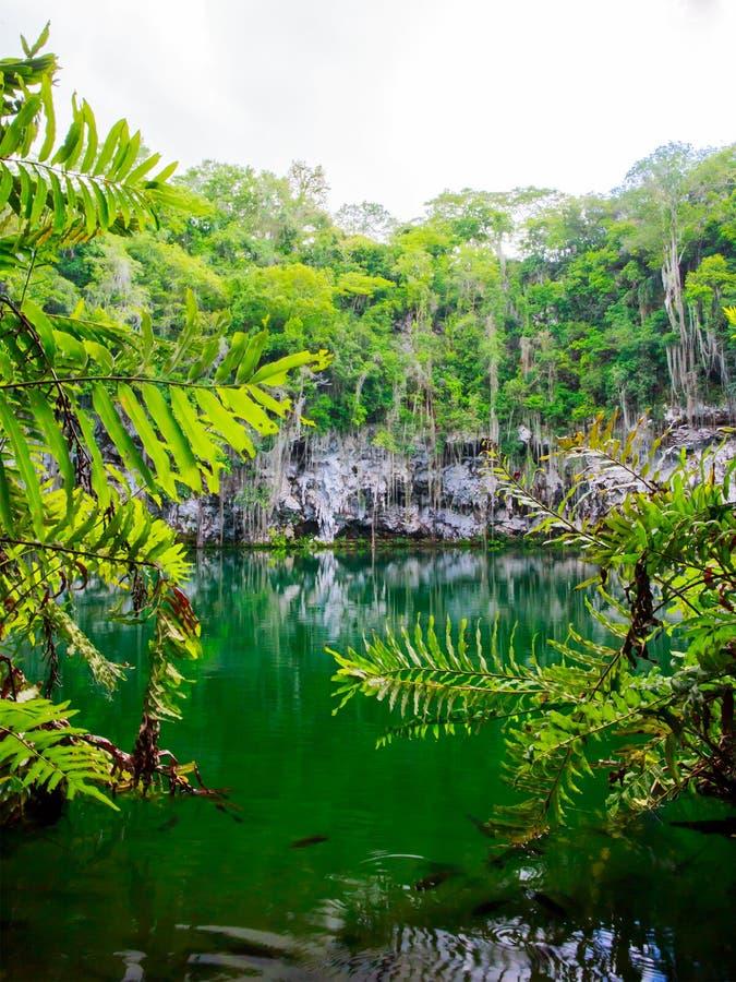 Cenote of Santo Domingo stock images