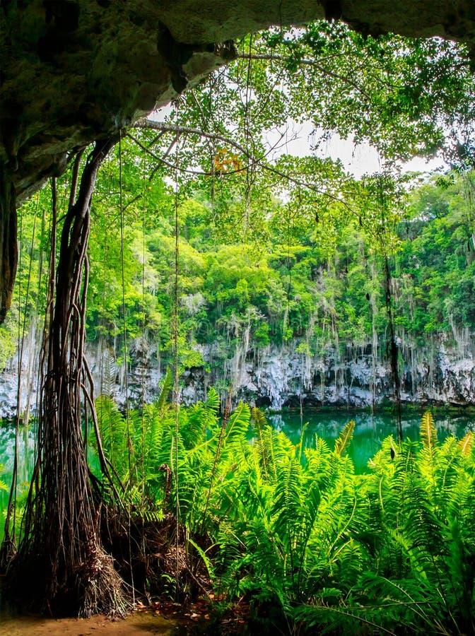 Cenote of Santo Domingo stock photos