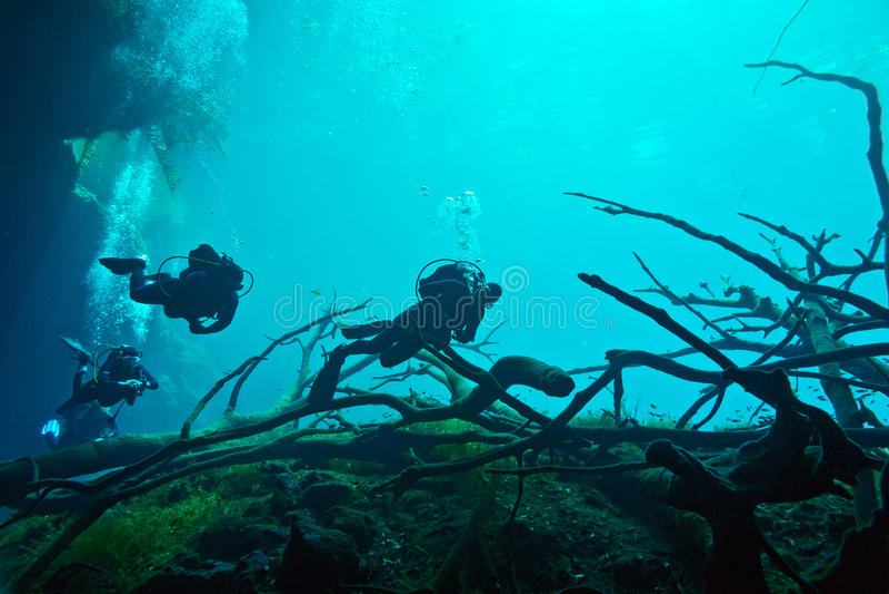 Cenote Unterwasser stockfotografie