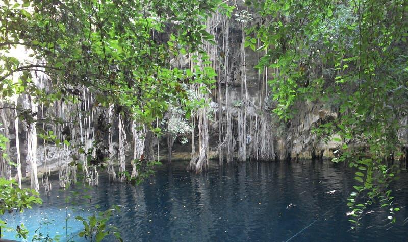 Cenote Yodzonot imagens de stock royalty free
