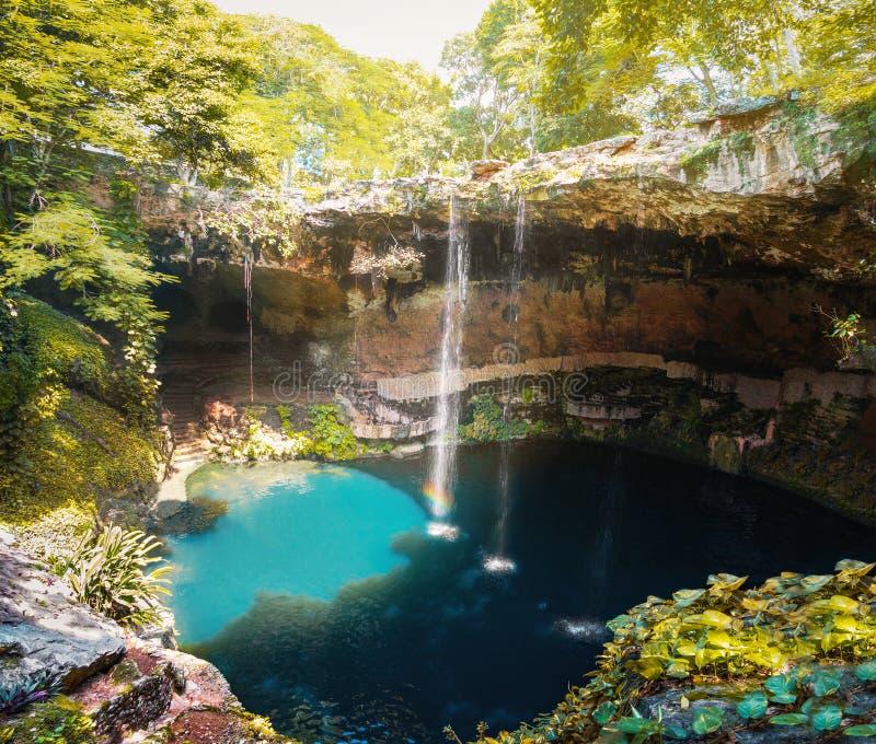 Cenote Zaci - Valladolid, Mexiko stockbilder