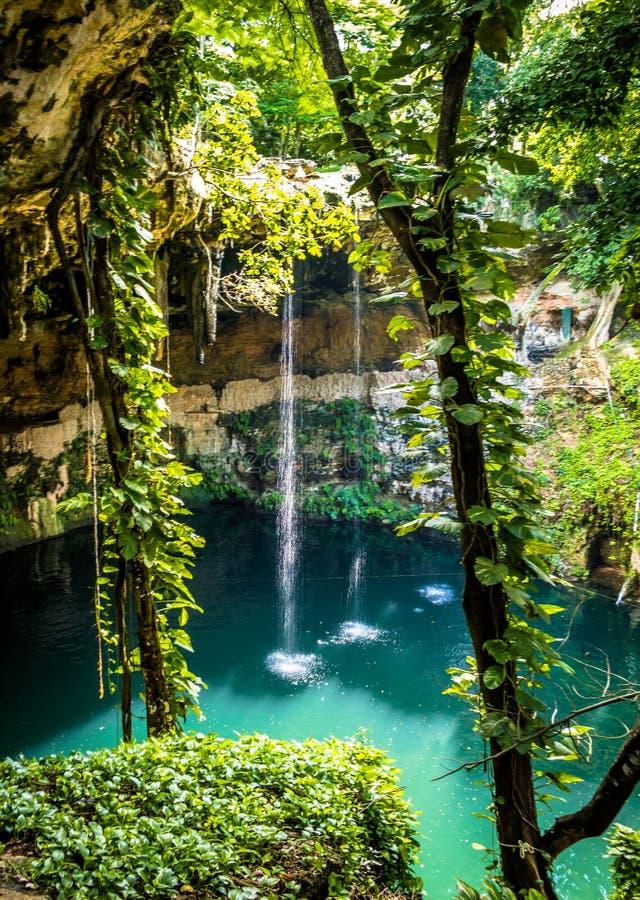 Cenote Zaci - Valladolid, Mexique image stock