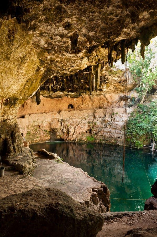 cenotemexico valladolid yucatan zaci arkivfoto