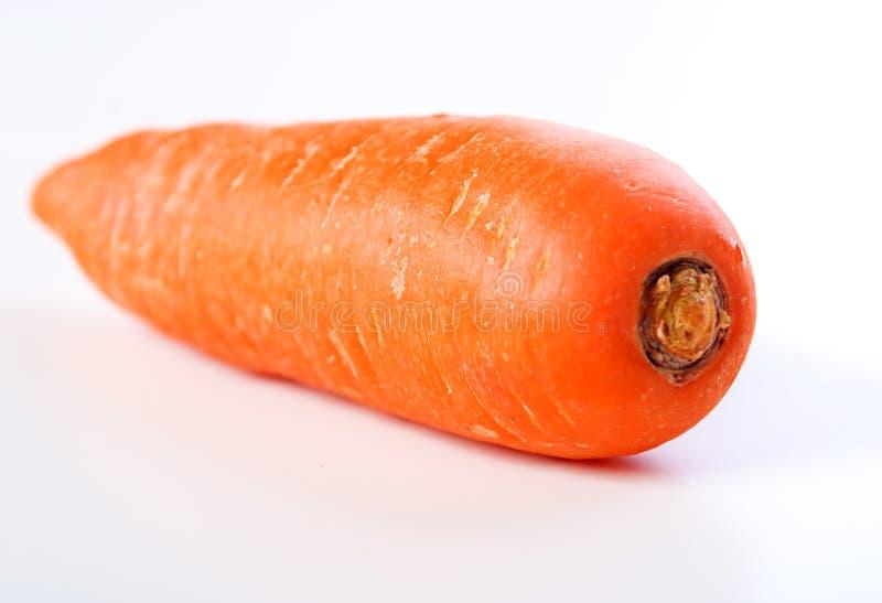 Cenoura foto de stock