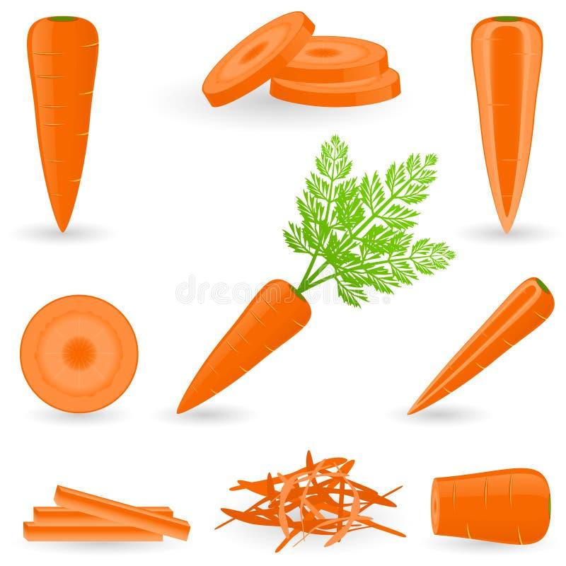 Cenoura ajustada do ícone ilustração stock