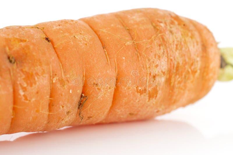 Cenoura alaranjada fresca no branco imagens de stock