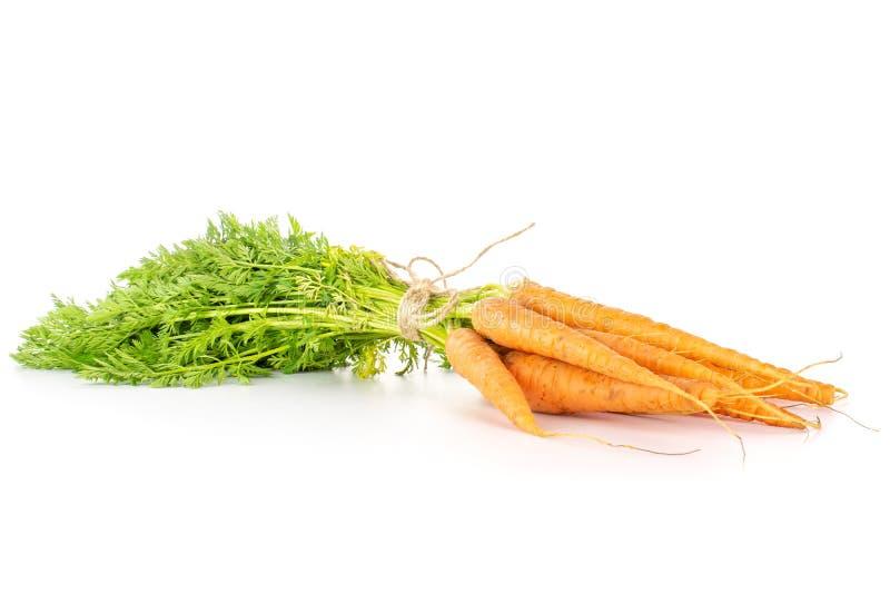 Cenoura alaranjada fresca no branco imagens de stock royalty free