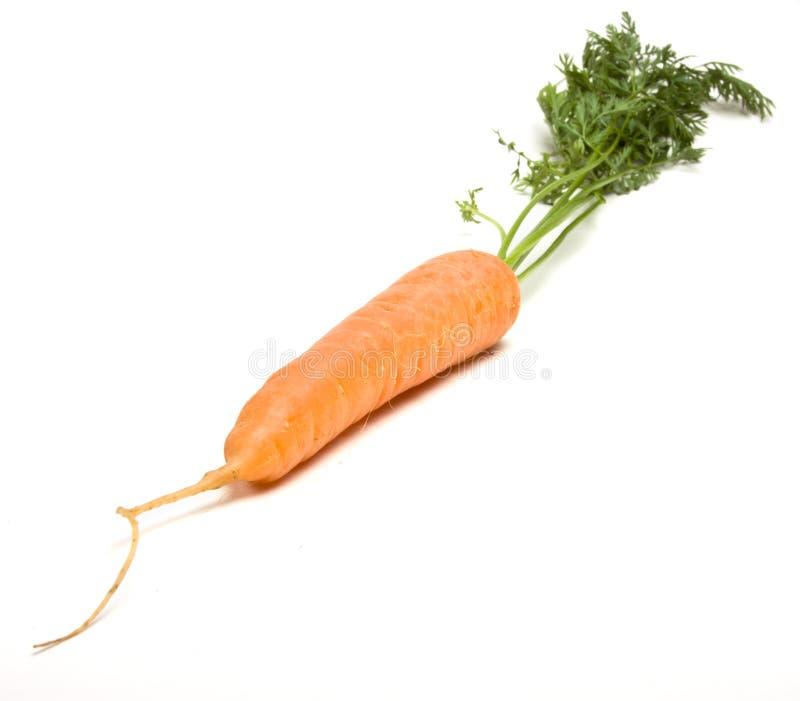 Cenoura fresca fotos de stock