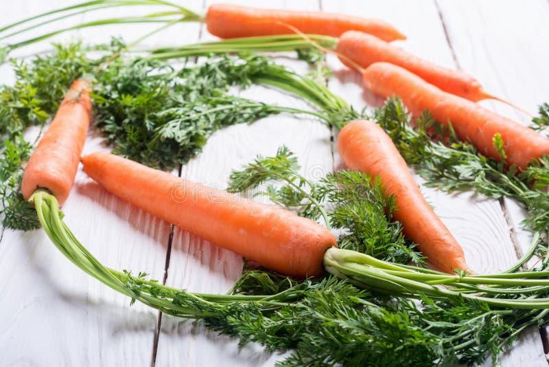 Cenoura vegetal com folhas fotos de stock