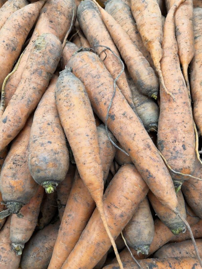 Cenouras alaranjadas, fundo das cenouras frescas que colocam muitas pilhas na loja, conceitos vegetais saudáveis do alimento imagem de stock