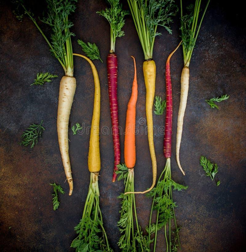 Cenouras de cores diferentes com raizes fotografia de stock royalty free