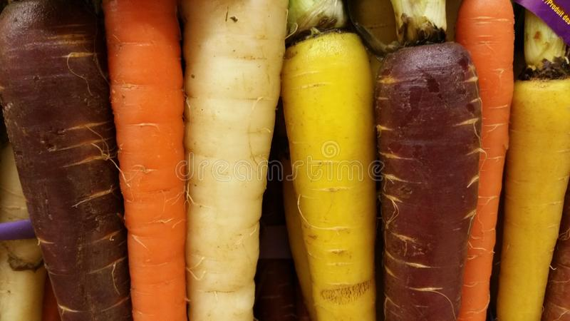 Cenouras do arco-íris imagem de stock royalty free