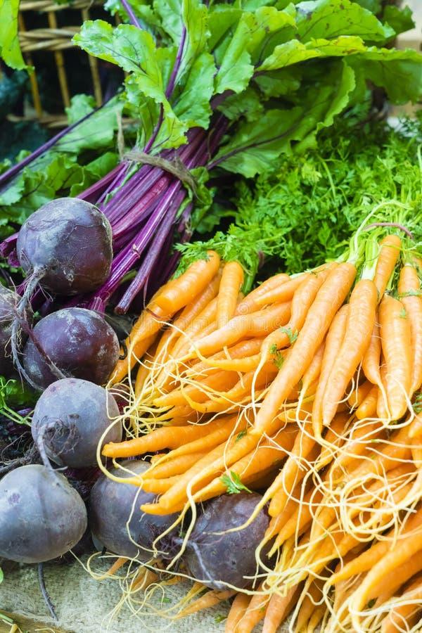 Cenouras e beterrabas holandesas frescas no mercado local dos fazendeiros fotos de stock