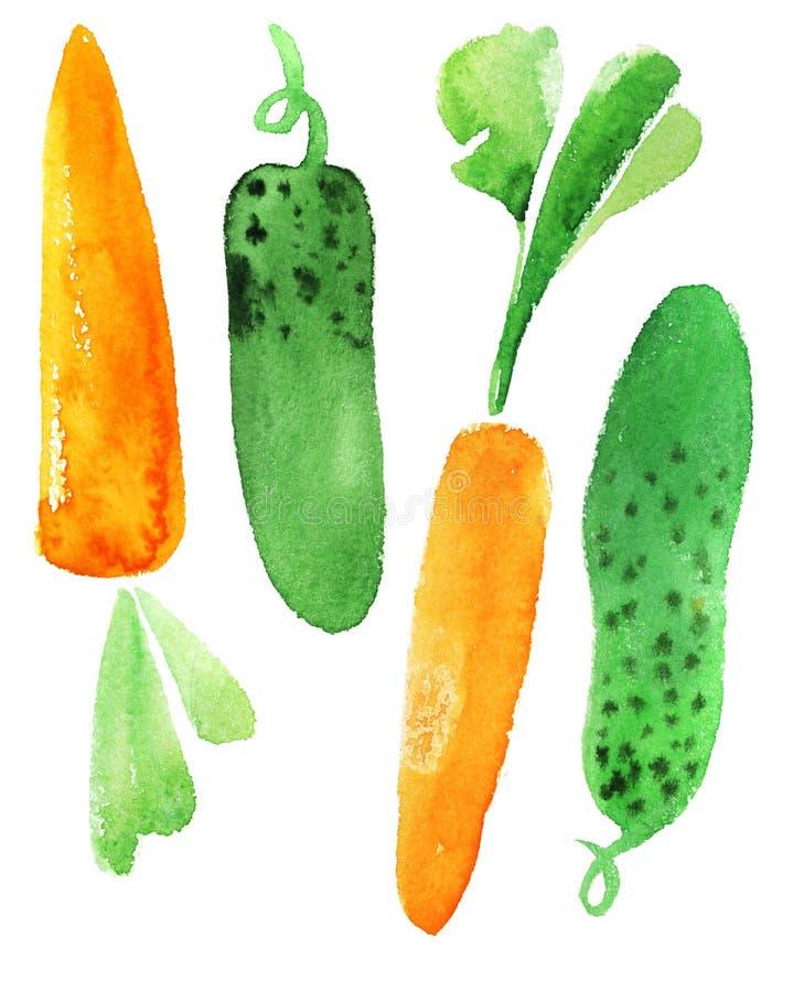 Cenouras e pepino ilustração do vetor