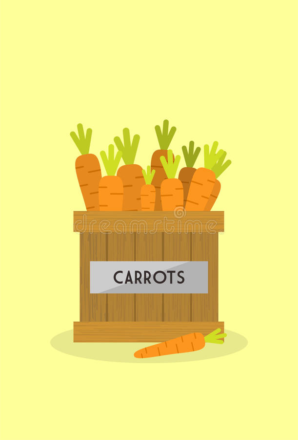Cenouras frescas imagem de stock