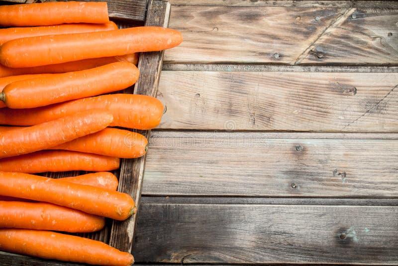 Cenouras frescas em uma bandeja de madeira imagem de stock royalty free